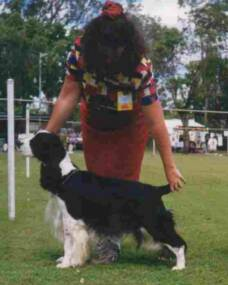 Best in Show ESSA of Qld 2000