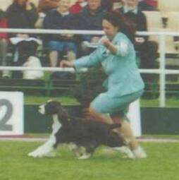 With Marg Whitfield (Brynfield) handling for BOB at Melbourne Royal 2001
