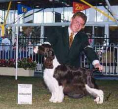 CC Bitch Sydney Royal Show 2000